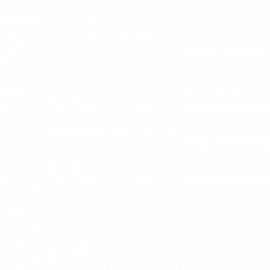Telma Vinhas